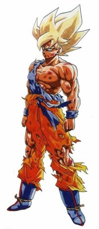 Sangoku Super guerrier