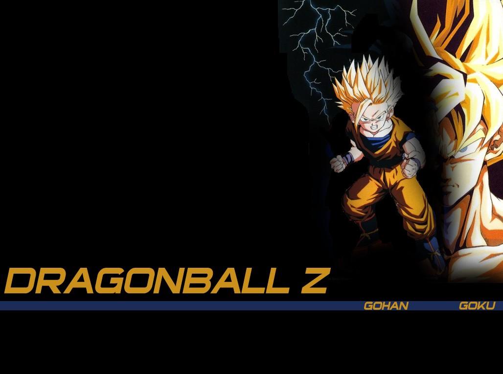 Dragon ball fonds d 39 cran for Fond ecran goku